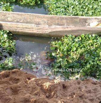 Moradores das imediações usaram uma canoa para empurrar o corpo até a margem do rio