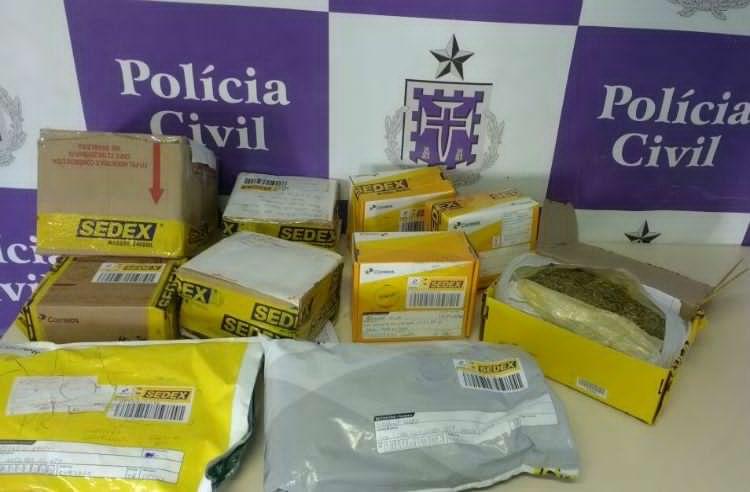 Droga saiu de Irecê para vários destinos, inclusive outros estados. (Foto: Divulgação/P.Civil)