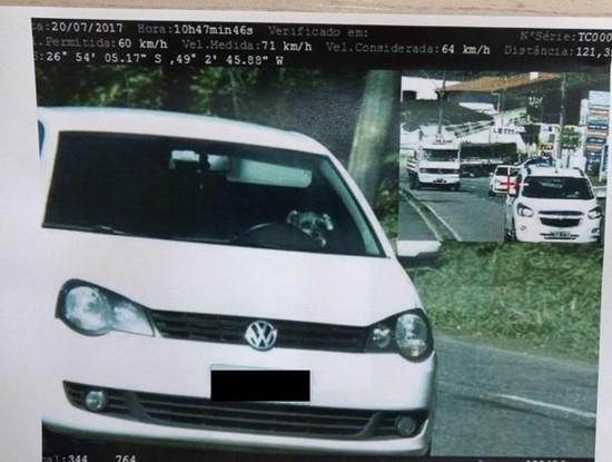 Órgão de trânsito informou ainda que o cachorro não deveria estar no banco da frente.
