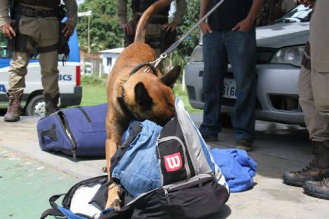 O passageiro I.S.V., de 35 anos, foi conduzido para Central de Flagrantes sendo realizado flagrante por tráfico de drogas.